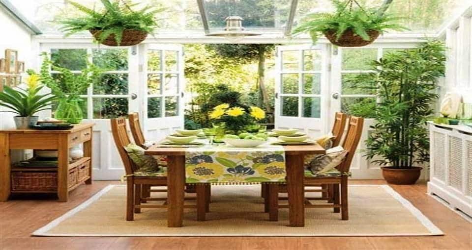 Piante benessere abitazione for Piante verdi da appartamento facili da tenere