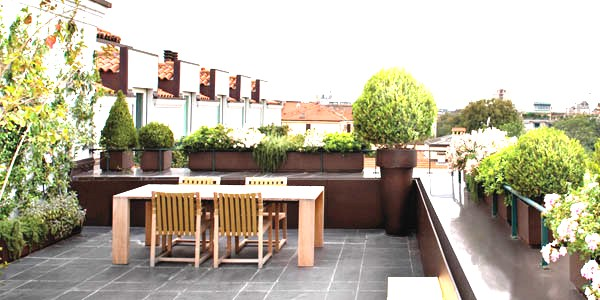 Manutenzione piante balconi terrazze for Piante per terrazzi